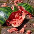 melon_smasher