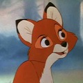 kid_fox