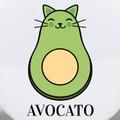 avocado_kat