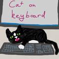 catonkeyboard