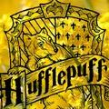 hogwartsheart