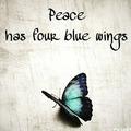bluewingedpoet2