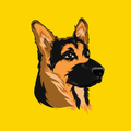 scout_puppy