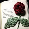 prettysunflower