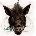 darcyboar