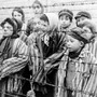 In memory of the innocent victims of the Nazi holocaust       extermination camps stories