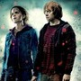 Romione4Eves Part 1 stories