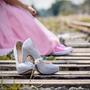 Pink Dress lgbtq stories