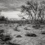 Abandoned storylandchallenge stories