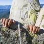 The Cliff:   a haiku tale cliff stories