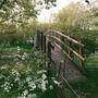 Old Times bridge stories