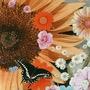 Butterflies haiku)  butterflies stories