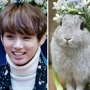 Bunny Kook army stories