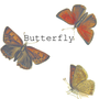 𝙱𝚞𝚝𝚝𝚎𝚛𝚏𝚕𝚢 butterfly stories