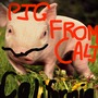 Rap about pigfromcali(totally not a dare)   @pigfromcali stories