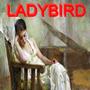 Ladybird I journey stories