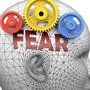 A fearful mind fear stories