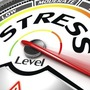 Stress Level put to The test thouhgts stories