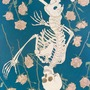 The Beautiful Skeleton ed stories