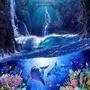 Wonders Of The Underwater undersea stories
