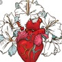 Bleeding heart stories