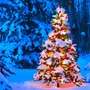 Under The Christmas Tree christmas-poetry-2020 stories