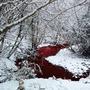 Scarlet River scarlet river stories