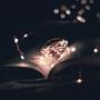 Words Burrowed In Dark promise stories