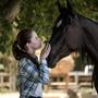 ℬ𝓁𝒶𝒸𝓀 ℬ𝑒𝒶𝓊𝓉𝓎 horses stories
