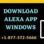 How to Download Alexa App on Windows OS? download alexa app stories
