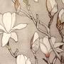 Virago and the Magnolia  virago stories