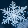 Christmas     [haiku] christmas-poetry-2020 stories