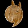 𝓒𝓸𝓶𝓶𝓪 𝓗𝓸𝓻𝓼𝓮  horses stories