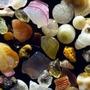 Sand Under a Microscope  joy stories
