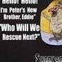 pets stories