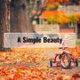 A Simple Beauty autumn stories