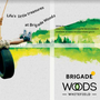 Brigade Woods Old Madras Road is Best Location for Residence  upcoming apartments in bangalore stories