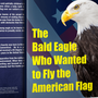 The Bald Eagle Who Wanted to Fly the American Flag the bald eagle who wanted to fly the american flag stories
