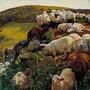 Sheep sheep stories