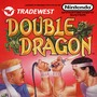 Double Dragon game stories