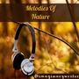 Melodies Of Nature                                                                                                                                                                                                                                      silent stories