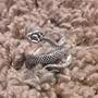 Snake rings snake stories