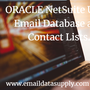 NetSuite Users Email Database and Contact Lists. netsuite user email database stories