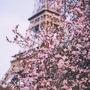 A voyage in Paris adrien stories