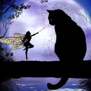 Mittens and the Pixie  midnight stories