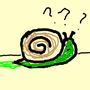 Dutch Snail Confusion snail stories