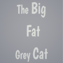 The Big Fat Grey Cat cat stories