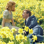 Daffodil free verse stories