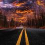 THE ROAD AHEAD street stories