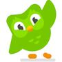 I'm learning French on duolingo duolingo stories